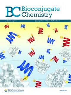 cover-picture-bioconjugate-chemistry-2019-30-54–62